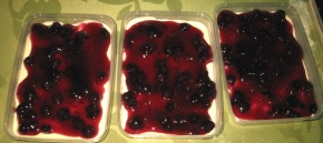 no-bake-blueberry-cheesecake
